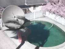 Pool Spider Out